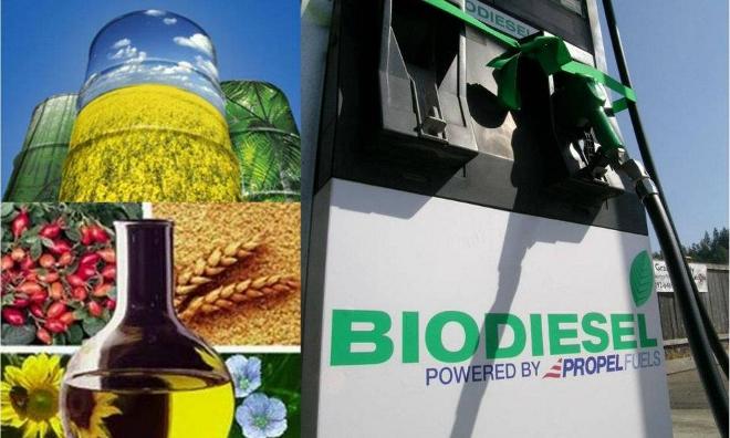 Se-estanca-el-uso-de-biocombustibles-en-Europa