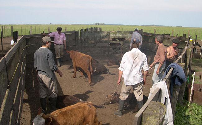 trabajador_rural